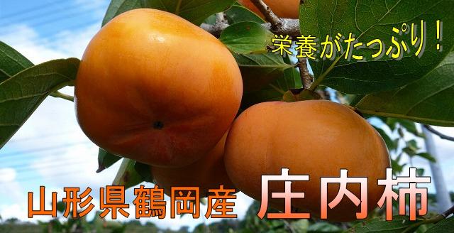庄内柿の商品一覧