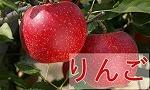 山形産りんごの商品一覧
