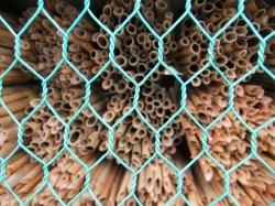 ミツバチの小屋の中
